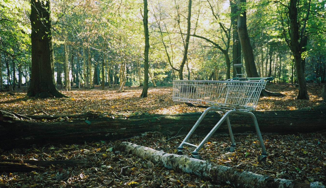 Empty shopping cart in forest
